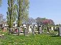 Cemetery - Styebank Lane - geograph.org.uk - 1264535.jpg