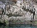 Cenote Choo-Ha - Cobá-1.jpg