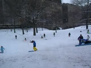 File:Central Park children sledding 2012-1-21 1536 W64 jeh.ogv
