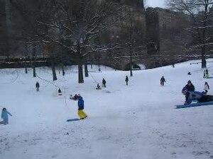File:Central Park children sledding 2012-1-21 1536 W64 jeh.ogv
