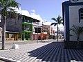 Centro da Cidade - panoramio.jpg