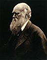 Charles Robert Darwin. Photograph by Julia Margaret Wellcome V0026273.jpg