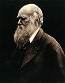 Charles Robert Darwin. Photograph by Julia Margaret Wellcome V0026273.jpg