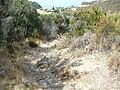 Chemin à Conchiglio (2).jpg