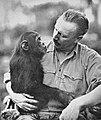"Cherry Kearton with the famous chimpanzee ""Toto"".jpg"