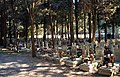 Cimitero di monumentale Staglieno-sepolture dei patrioti.jpg