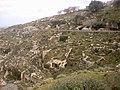 Cirene - la necropoli - panoramio.jpg