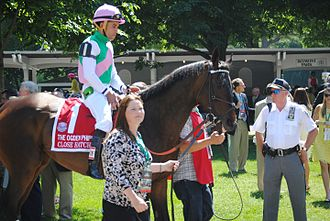 Close Hatches - Close Hatches in the walking ring for the 2014 Ogden Phipps