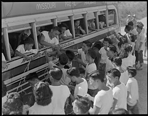 Trailways Transportation System - Japanese-American youths are transported to the Rohwer War Relocation Center aboard a Missouri Pacific Trailways bus, 1944