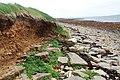 Coastal erosion - geograph.org.uk - 1290643.jpg