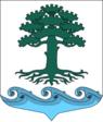 Coat of Arms of Molodyozhnoye (St Petersburg).png