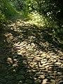 Cobbly Walk, Avonwick - geograph.org.uk - 1379870.jpg