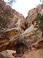 Cohab Canyon , DyeClan.com - panoramio (3).jpg