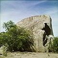 Collectie Nationaal Museum van Wereldculturen TM-20029507 Dolomiet met planten ervoor Aruba Boy Lawson (Fotograaf).jpg