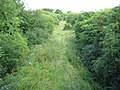 Collingbourne Kingston, Trackbed of the former MandSWJR - geograph.org.uk - 1405218.jpg