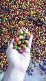 Colorful of coffee.jpg