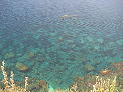 Cool, calm, Mediterranean waters (2584374919).jpg