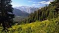 Copper Creek Trail.jpg