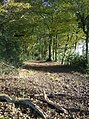 Corker's Lane bridleway, in Checkendon, Oxfordshire.jpg