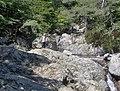 Corsica - Cascade des Anglais - Andrea & Zsolti - panoramio.jpg