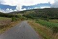 Couso de Arriba-Campolongo-Negreira-Galiza.jpg