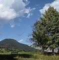 Cucal - panoramio.jpg