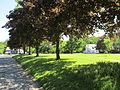 Cushman Common, Cushman MA.jpg
