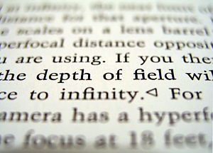 Focus (optics) - An image that is partially in focus, but mostly out of focus in varying degrees.