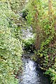 DSC01473-Fischtreppe Oker bei Meinersen.jpg