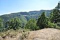 Dacian Fortress of Capalna 014.jpg