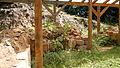 Dacian Fortress of Tilisca - 38.jpg