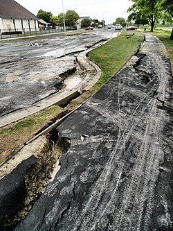 Aftermath of the 2011 earthquake in Avondale