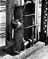 Damage to the swing span of the Granville Bridge 1936 2.jpg