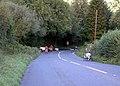 Dartmoor-16-Ponys-Dreirad-2004-gje.jpg