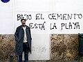 David Hammerstein cemento y playa.jpg