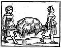 De omnibus agriculturae partibus et de plantarum et animalium generibus1.jpg