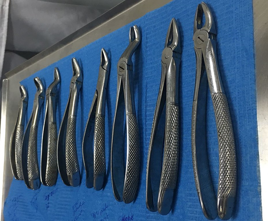 File Dental Extraction Forceps Jpg Wikimedia Commons
