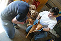Deployed airmen volunteer at local pet shelter 130210-F-UA873-315.jpg