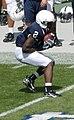Derrick Williams catch.jpg