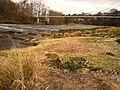 Dinckley BB6, UK - panoramio.jpg