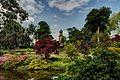 Dingle Garden Shrewsbury.jpg