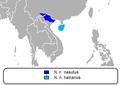 Distribución nomascus nasutus.png