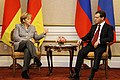 Dmitry Medvedev 15 November 2008-1.jpg