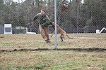 Dogs broaden students' horizons 111209-M-FL266-093.jpg