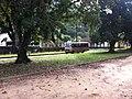 Dois Rios - Schulbus - panoramio.jpg