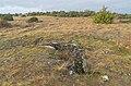 Dolmen de Vezinies III 07.jpg