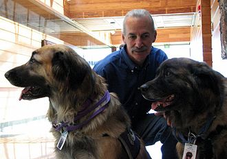 Don Eigler - Don Eigler in 2007 with his two dogs Neon and Argon