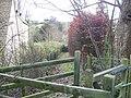 Down the footpath - geograph.org.uk - 1616418.jpg
