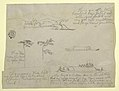 Drawing, Sketches from Colombia- Trees and Rivercraft (Champans), 1853 (CH 18200763).jpg