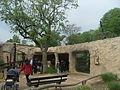 Dresdner zoo tierhaus.jpg